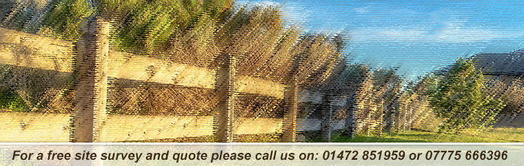 LTL Fencing and Field Care Header Image